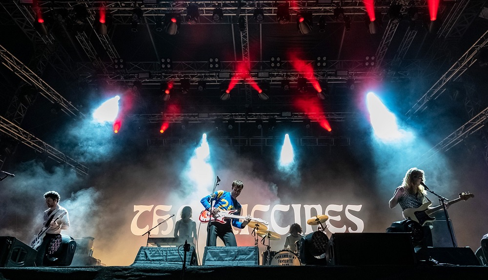 TheVaccines_Band